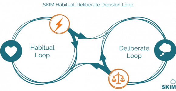 SKIM Habitual Deliberate Decision Loop