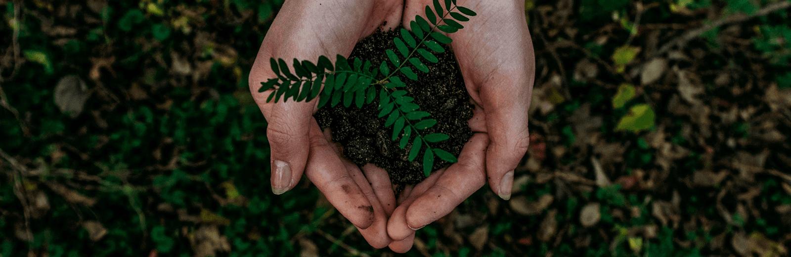Marktforschung-SKIM-Sustainability-Webinar-2021
