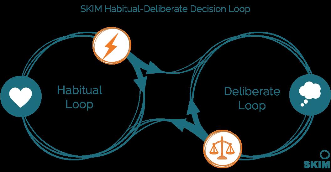 SKIM Habitual Deliberate Decision Loop FINAL
